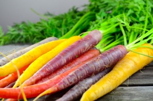 yellow and purple carrots